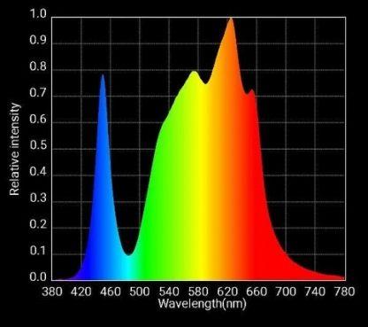 225/Elite Spectrum